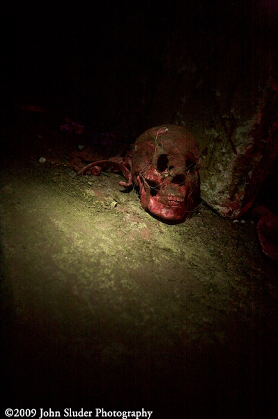 Skull on the floor