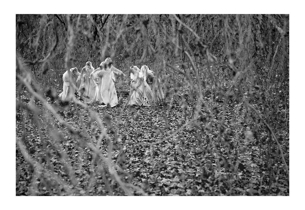 Woodland Nymphs
